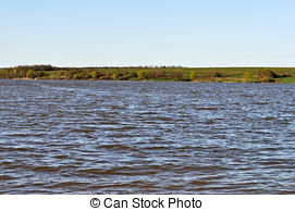 Picture of Spring landscape. Trees on riverbank of The Narew River.