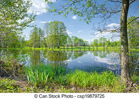 Stock Photo of The Narew River Scenery. Nature reserve..