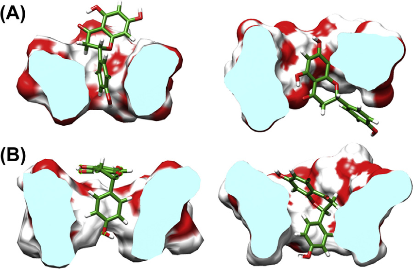 Enhanced stability of a naringenin/2,6.