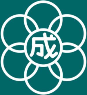 Flag of former Narita Chiba.