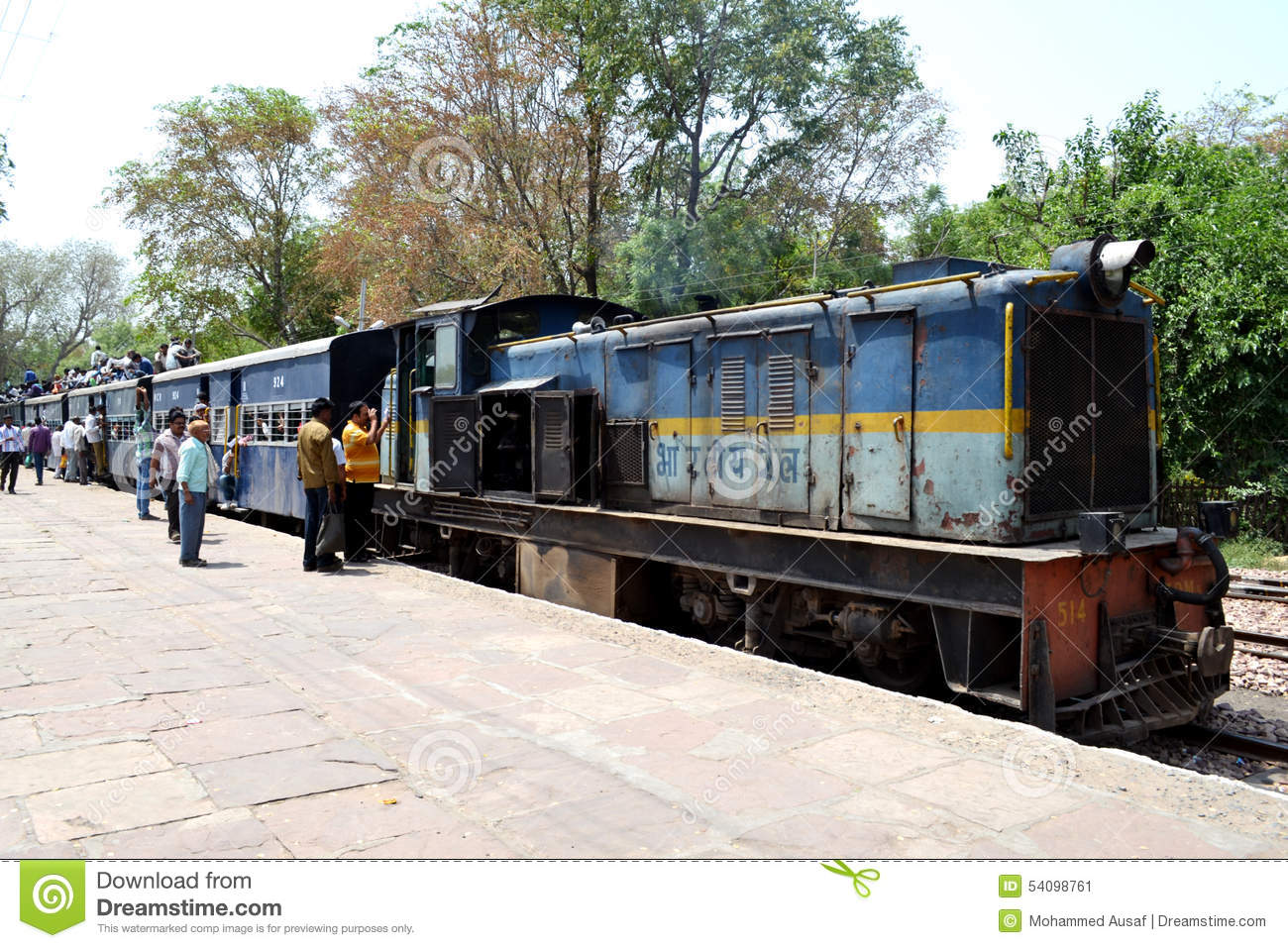 Indian Narrow Gauge Train Editorial Photo.