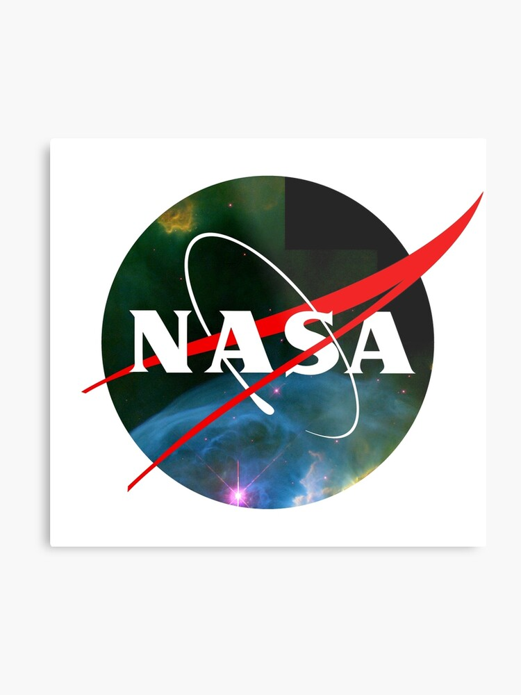 Nasa Meatball Logo.