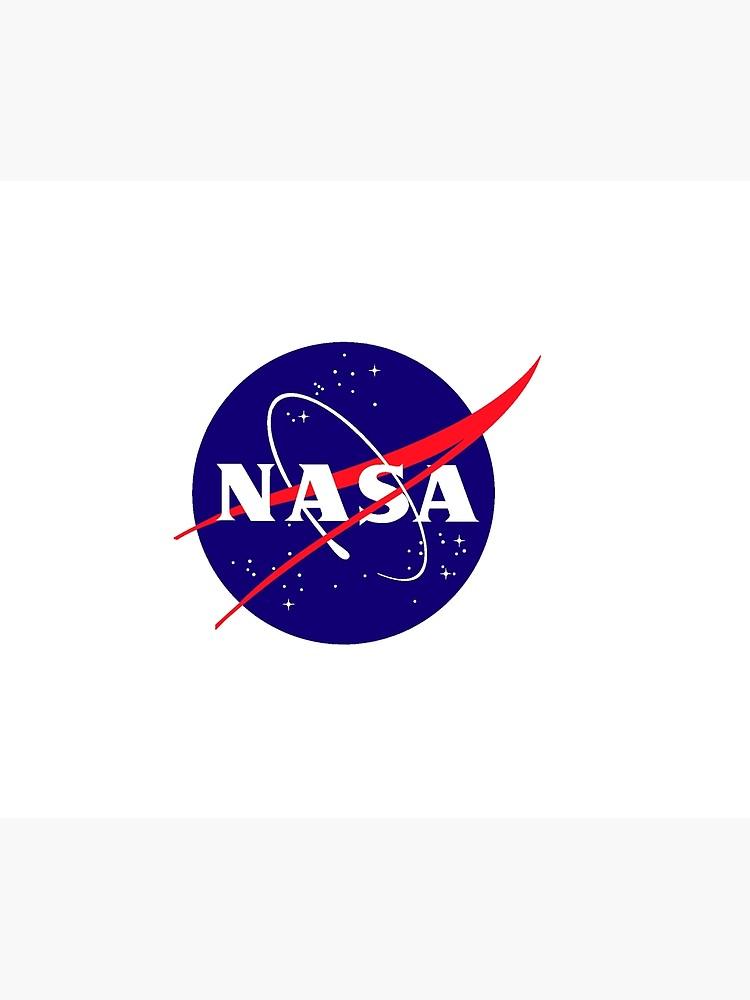 Official NASA (meatball) Logo.