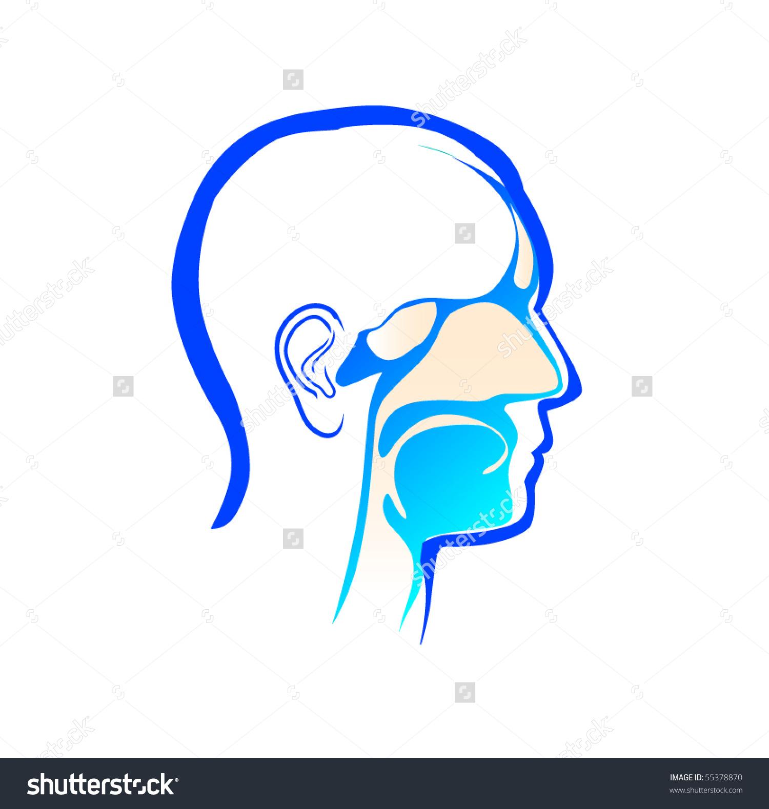 Ear Nose Throat Stock Vector 55378870.