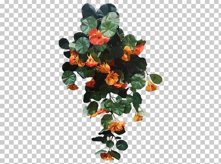 Nasturtium Shrub Plant Leaf Bush PNG, Clipart, Bush, Flower.