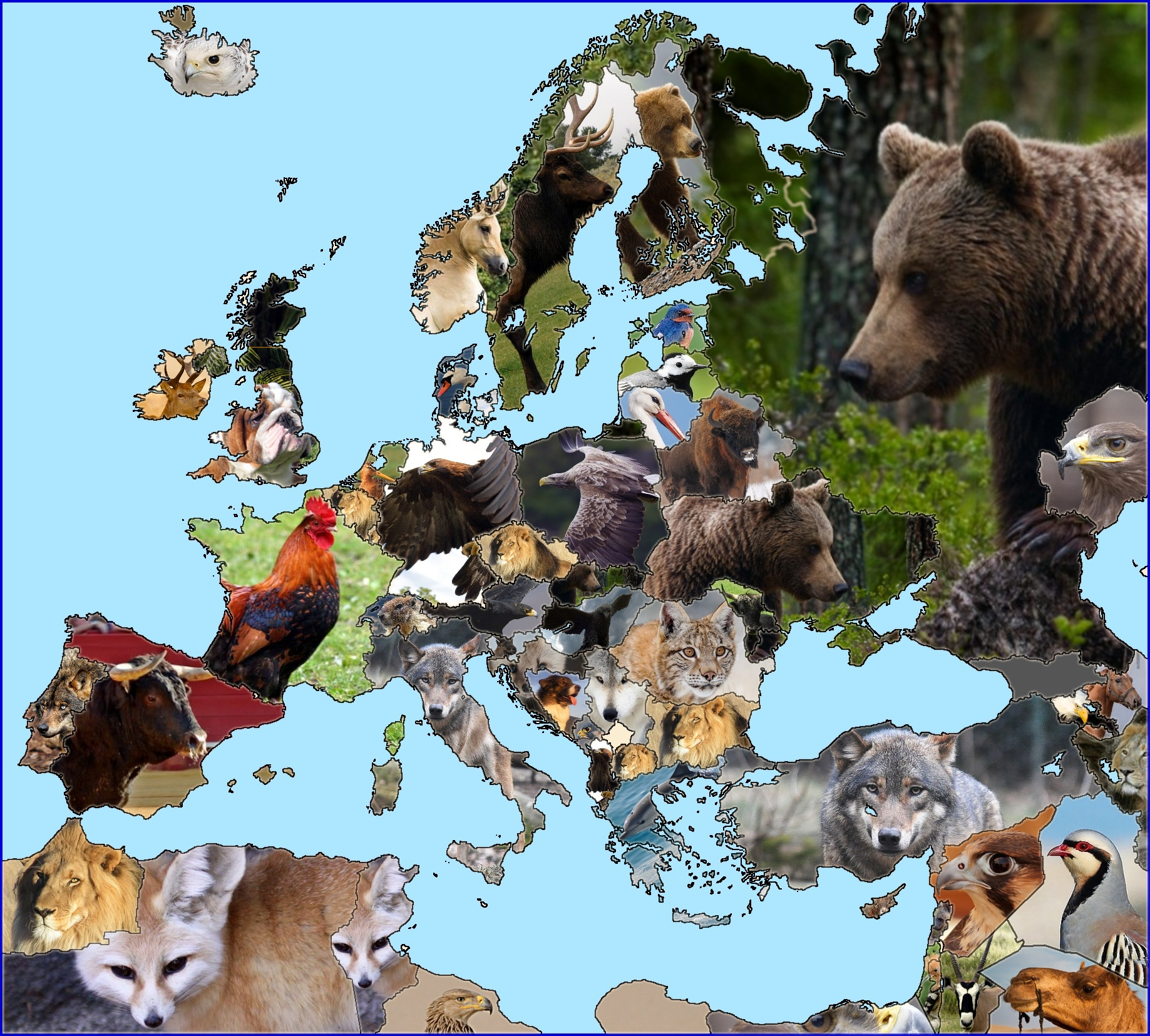 Map of European (and surrounding) national animals : europe.