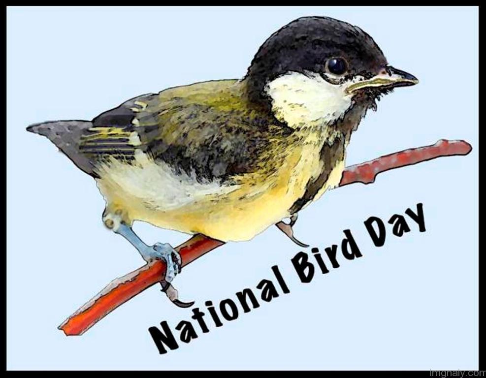 National Bird Day Birds Sitting Clipart.