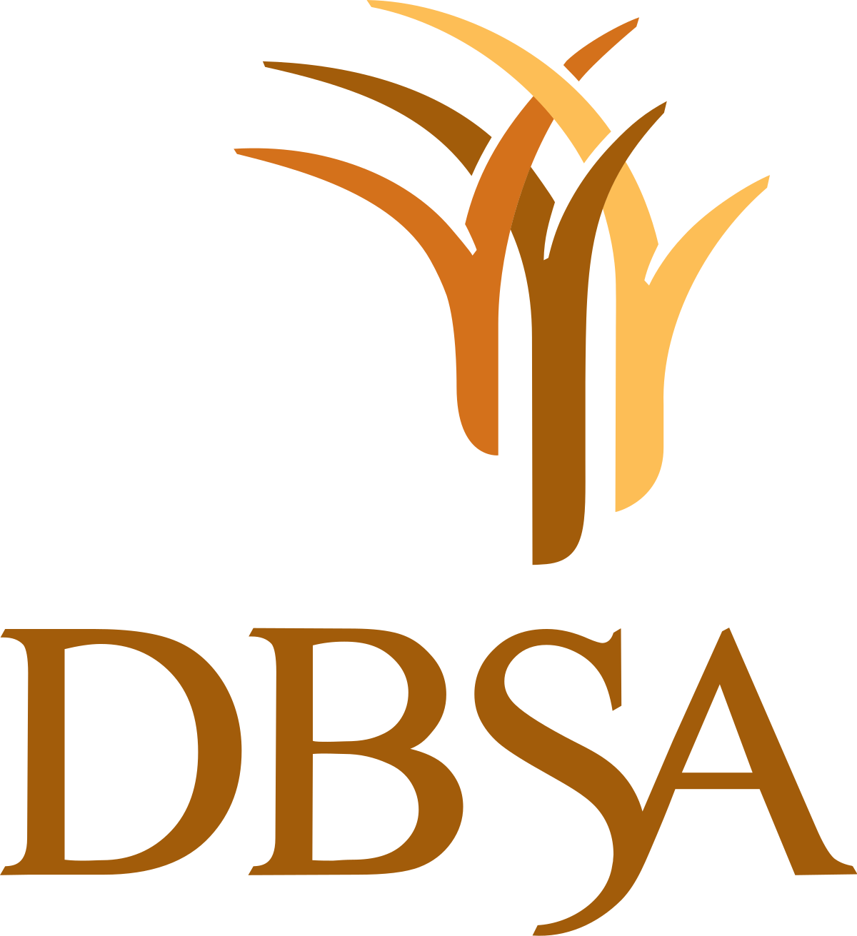 Development Bank of Southern Africa.