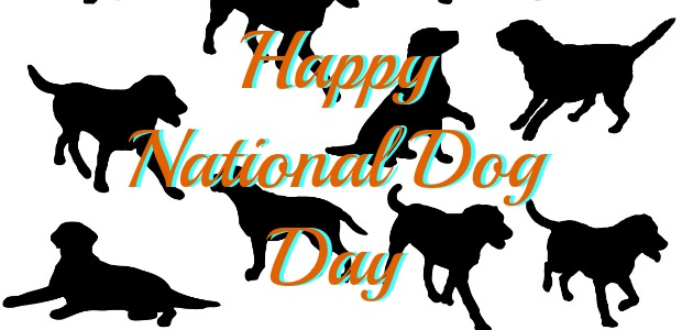 55 Most Beautiful National Dog Day Greeting Pictures And Photos.