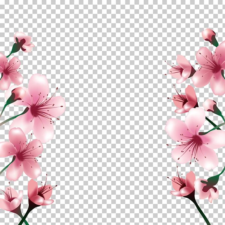 National Cherry Blossom Festival Paper, Cherry blossoms.