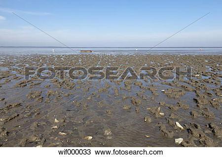 Stock Photo of Germany, Lower Saxony, Eastern Friesland, Lower.