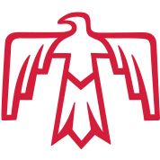 172 Best Thunderbird images in 2015.