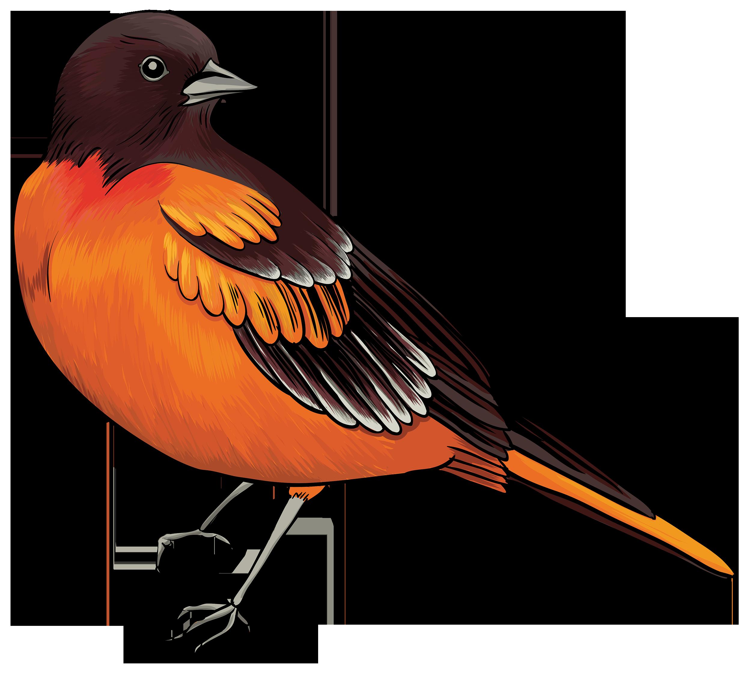 Spring Birds Clipart Clip art of Bird Clipart #8756 — Clipartwork.