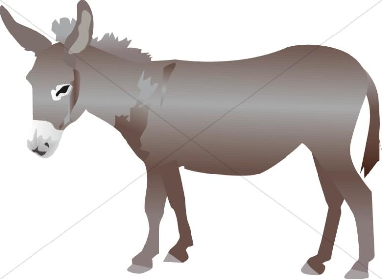 Nativity Donkey.