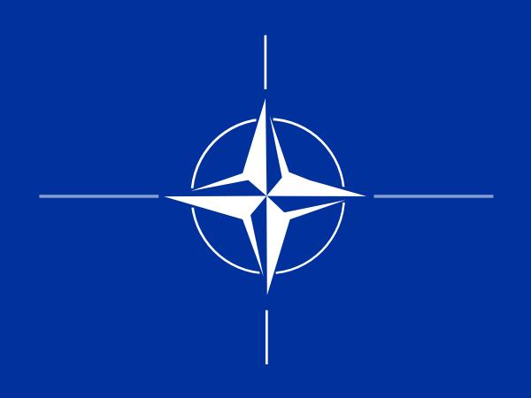 Nato clip art Free Vector / 4Vector.
