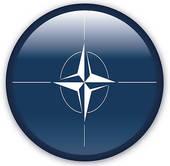 Nato Stock Illustrations.