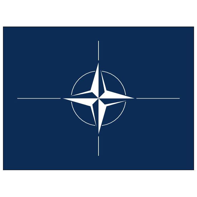 NATO vector flag.