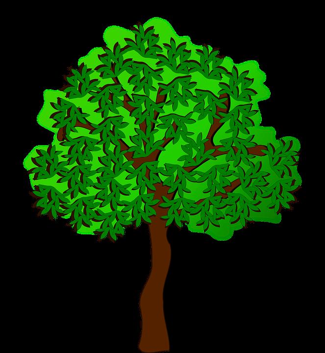 Vector gratis: Clipart, Flora, Naturaleza, Planta.
