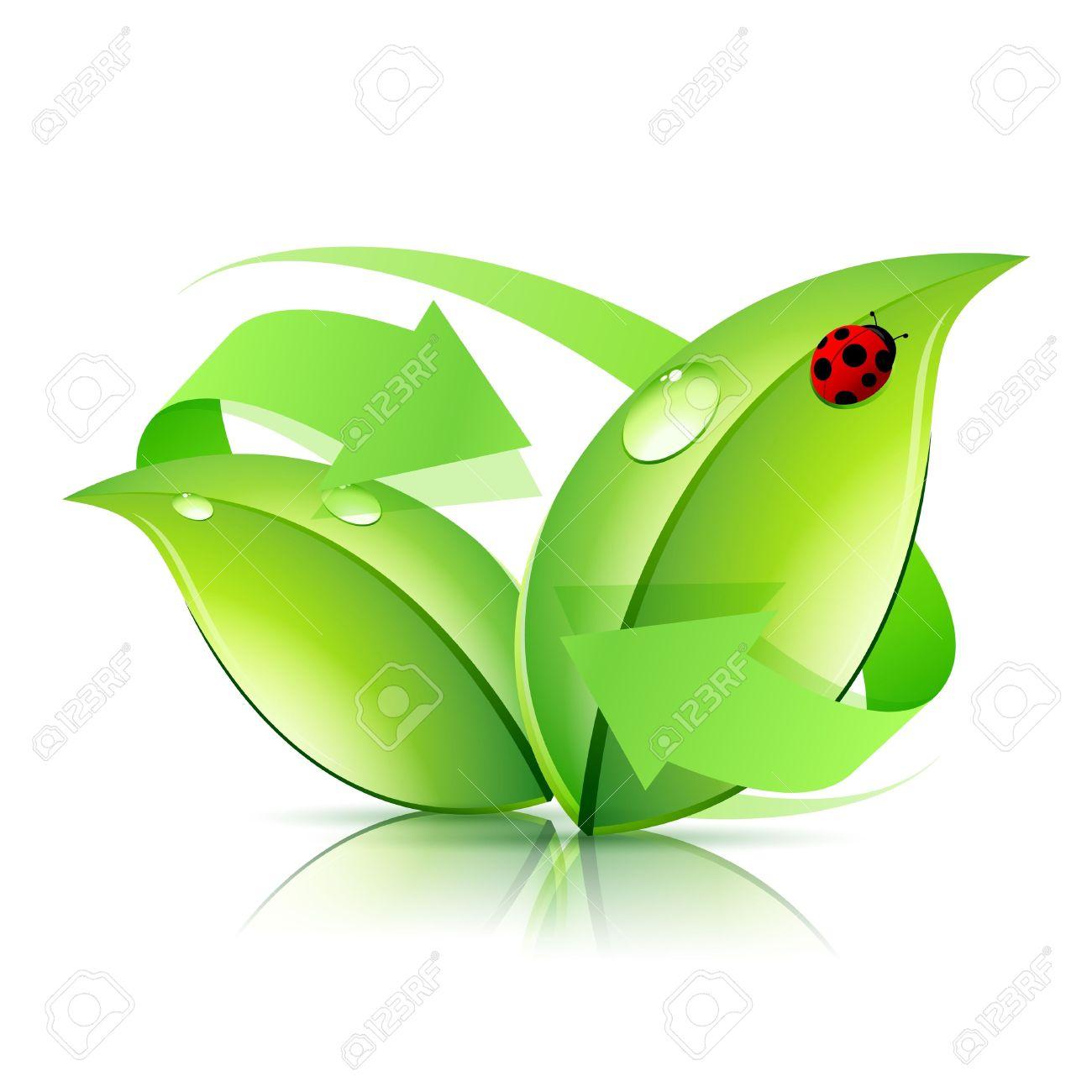 Logo De Reciclaje Con La Naturaleza Flecha Y Mariquita.