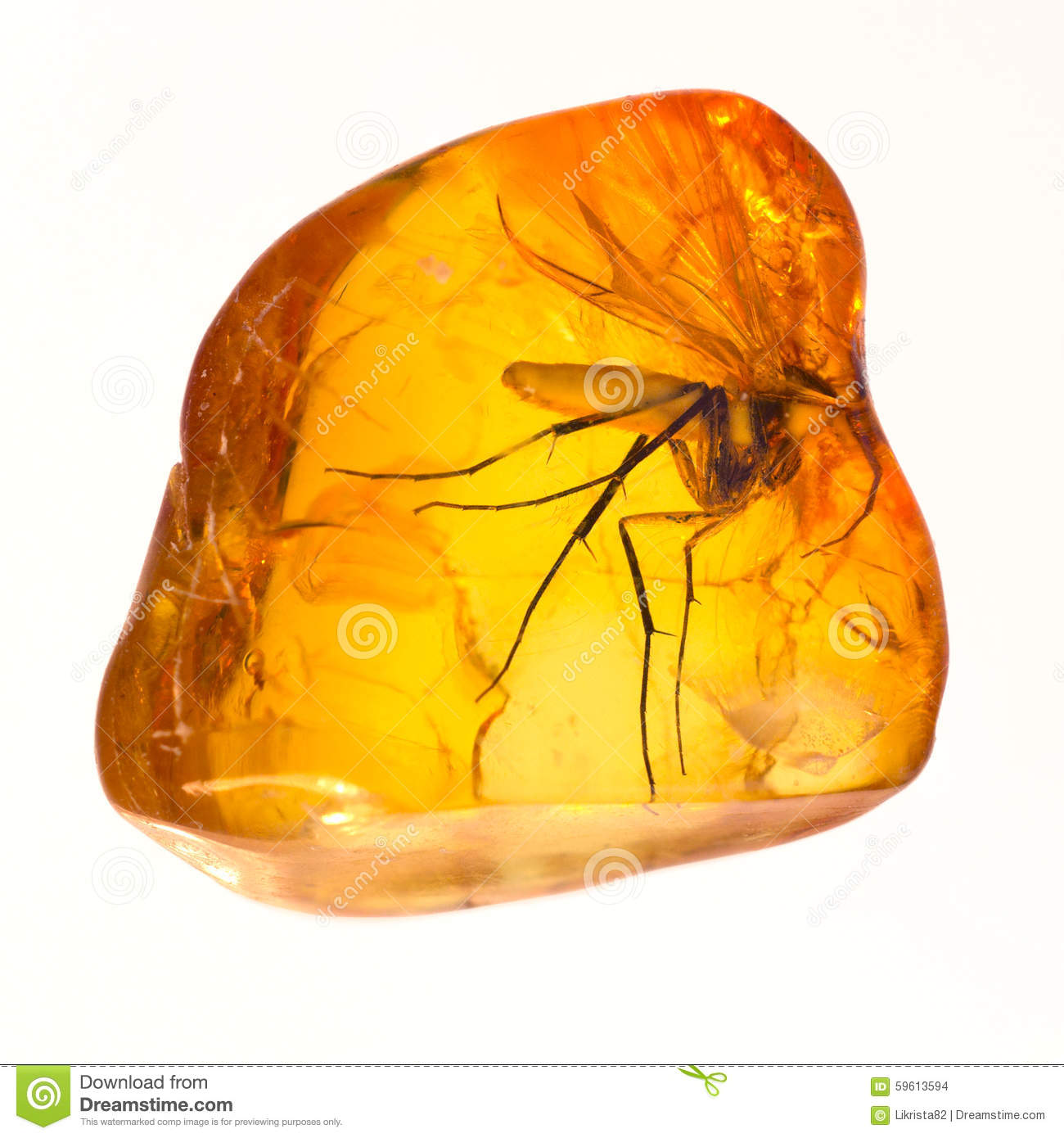 Baltic Amber Stone. Stock Photo.