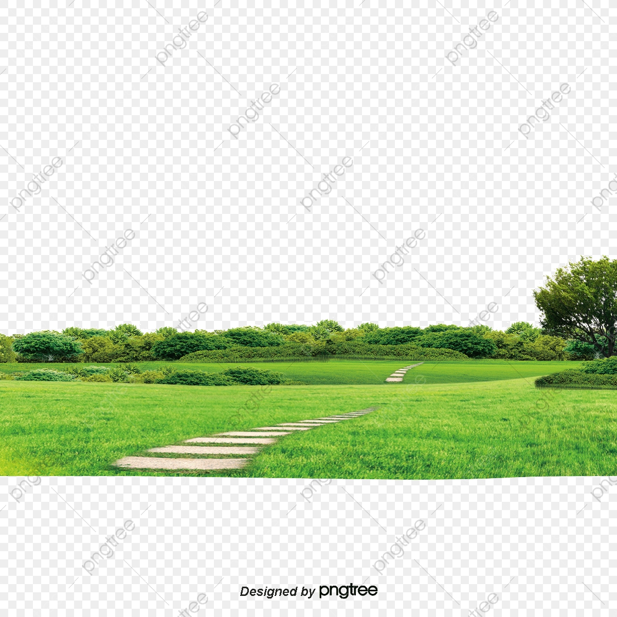 Background Of Nature, Nature, Background, Tree PNG.