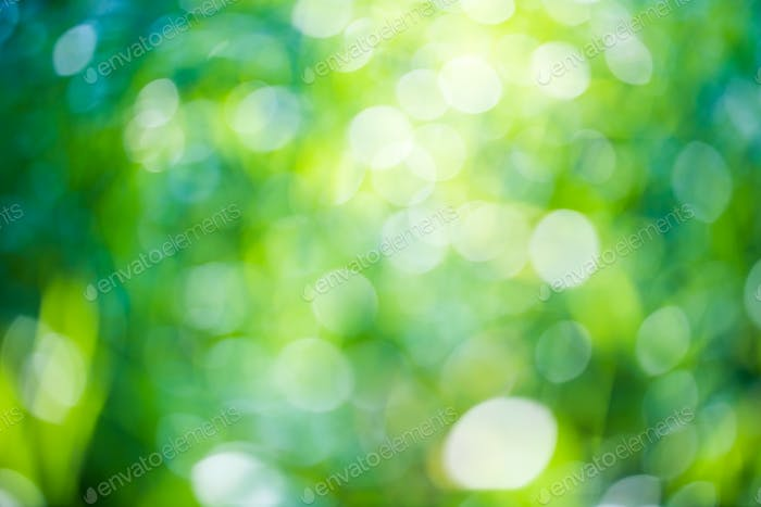 Download Free png Green bokeh natural background photo by.