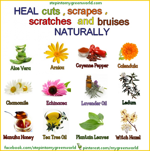 ☛ Heal cuts, wounds and bruises the natural way. Mother Nature.
