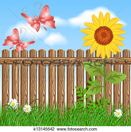 Clipart of Wooden fence on green grass with sunflower k13145542.