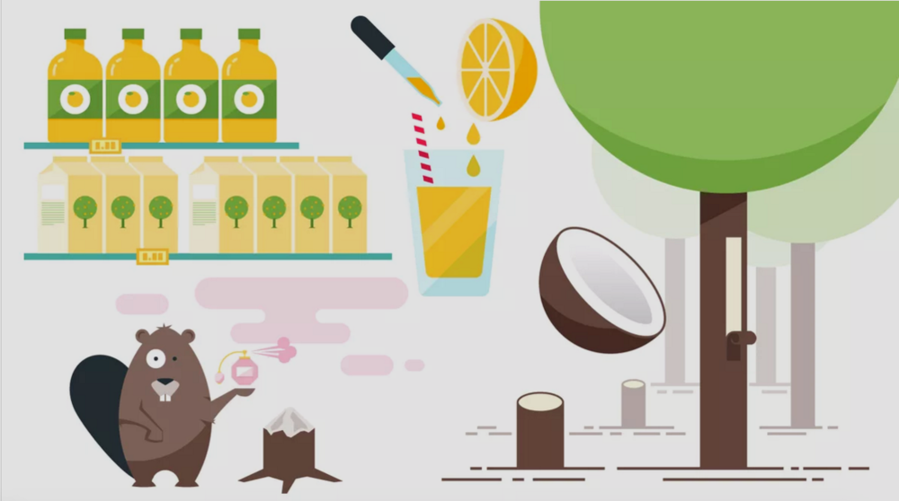 Flavor — Museum of Food and Drink (MOFAD).
