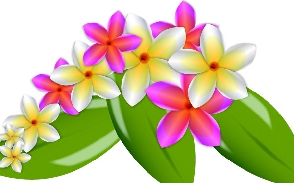 Vector natural flowers free vector download (12,866 Free vector.