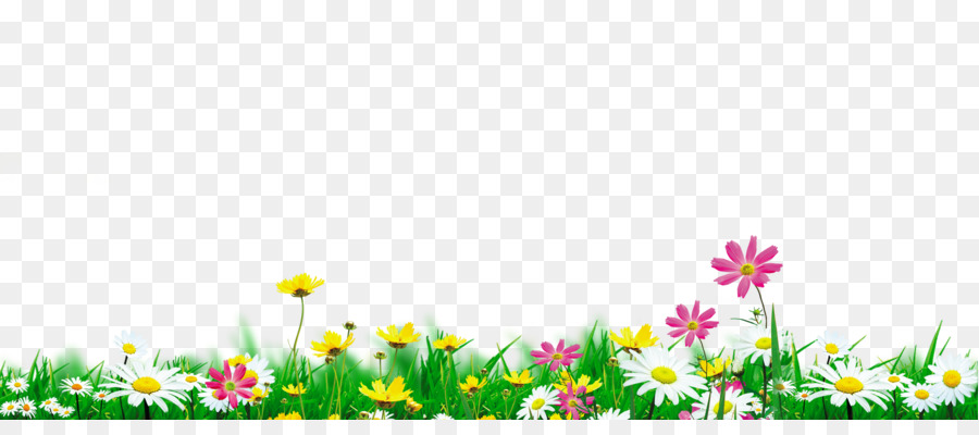 Nature Flowers Png & Free Nature Flowers.png Transparent.