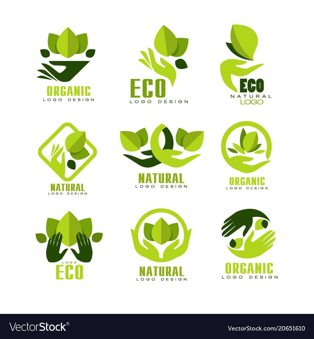 Eco organic logo design set premium quality.