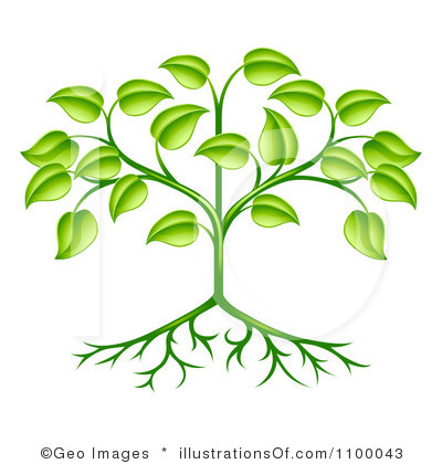 Growing Plant Stages Clipart Panda Free Clipart Images.