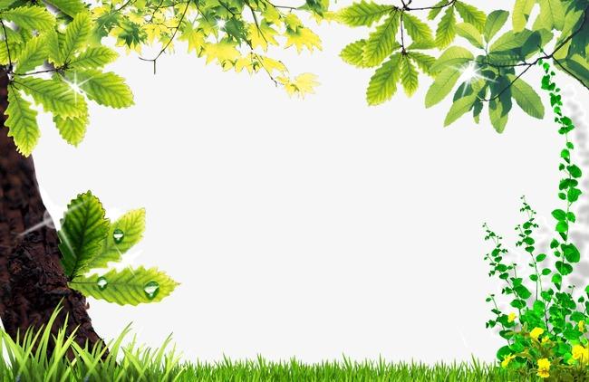 Nature Frame Png & Free Nature Frame.png Transparent Images.