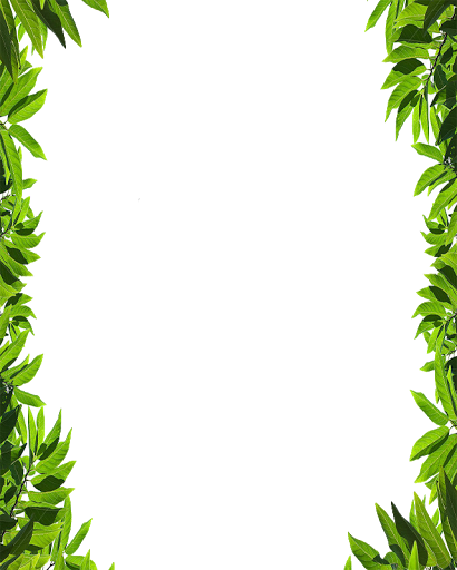 Frame Png Natural Vector, Clipart, PSD.