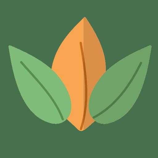 Flat leaves natural illustration.