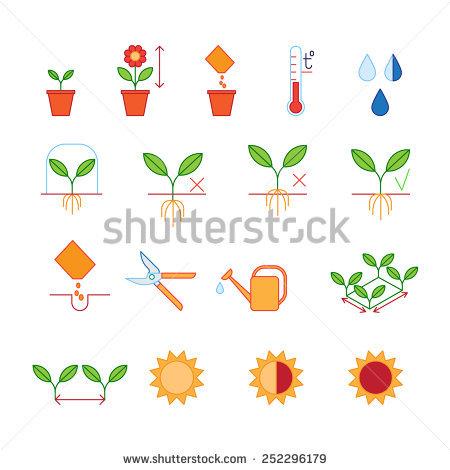Tree Pruning Stock Vectors, Images & Vector Art.