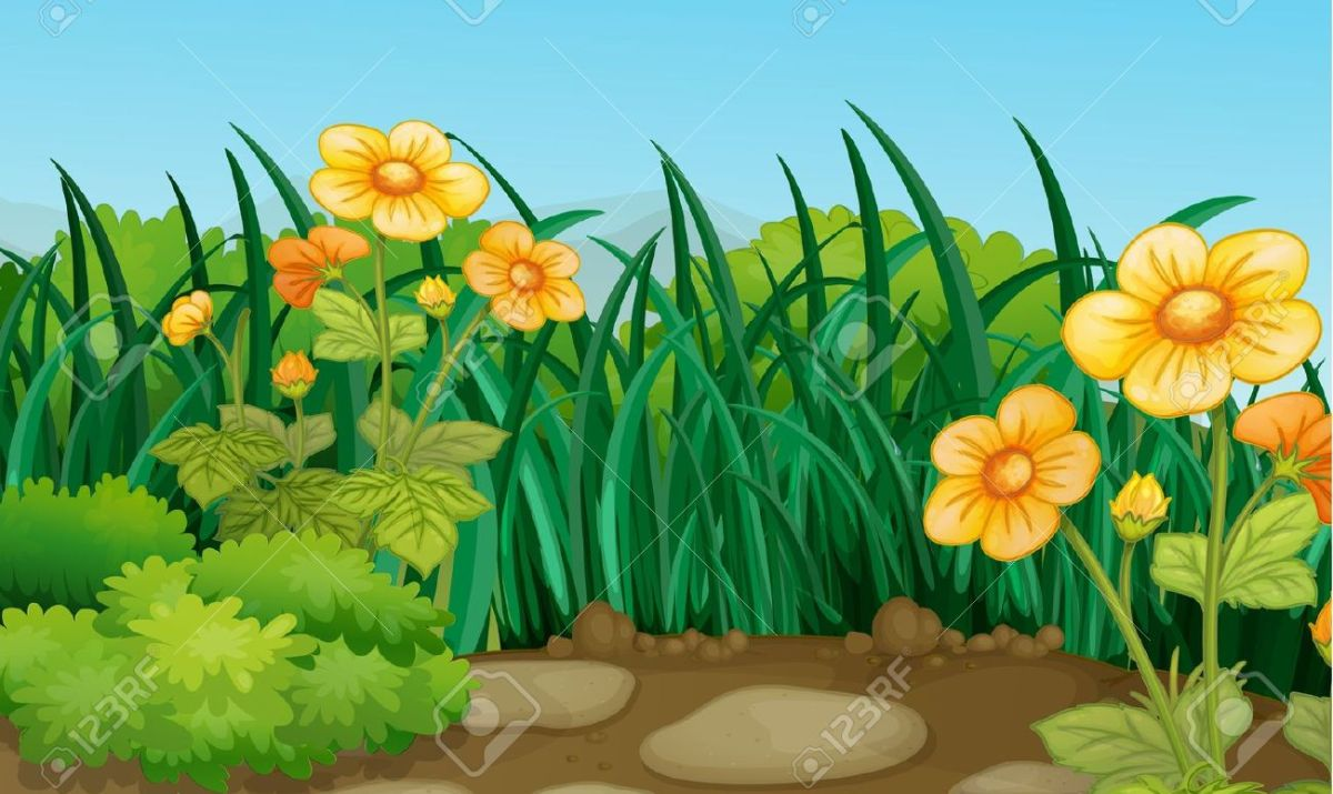 Beautiful Scenery Hd Clipart Free Download Clipartfox.