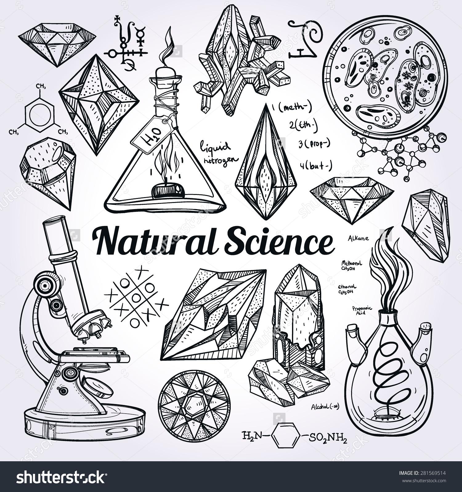 Hand Drawn Beautiful Vintage Natural Science Stock Vector.