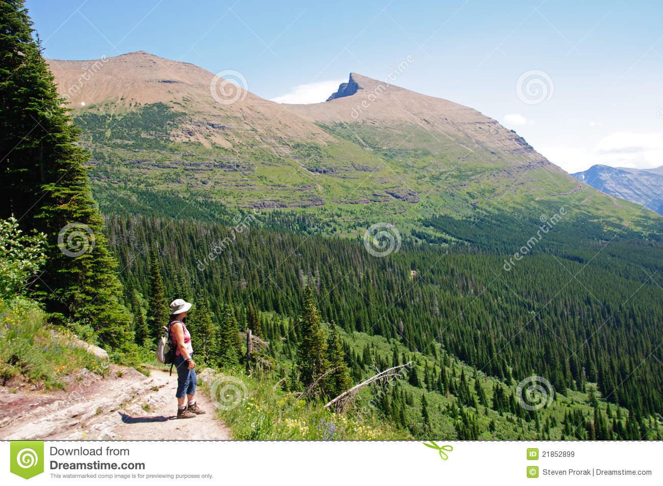 Enjoying The Natural Splendor Royalty Free Stock Images.