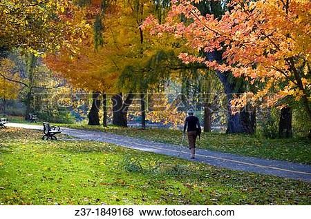 Pictures of A lone woman walks with a crutch amidst autumn.