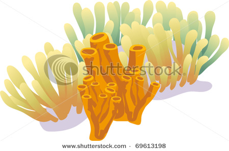 Related Keywords & Suggestions for Sea Sponge Clipart Black And White.