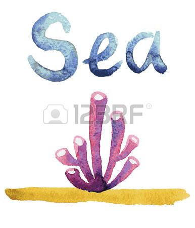 271 Sea Sponge Stock Vector Illustration And Royalty Free Sea.