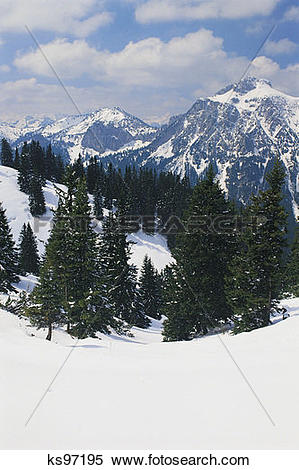 Stock Image of CD Winter, alps, forest, Germany, mountain, munich.