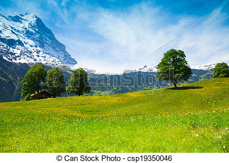 Stock Photo of Summer nature landscape near Alps.