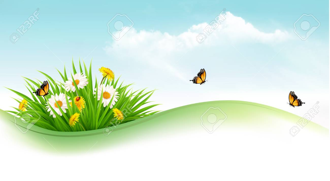 Nature background with grass and flowers and butterflies. Vector...