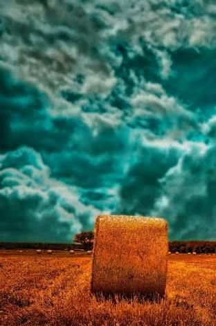 Image result for cb edit background hd nature.