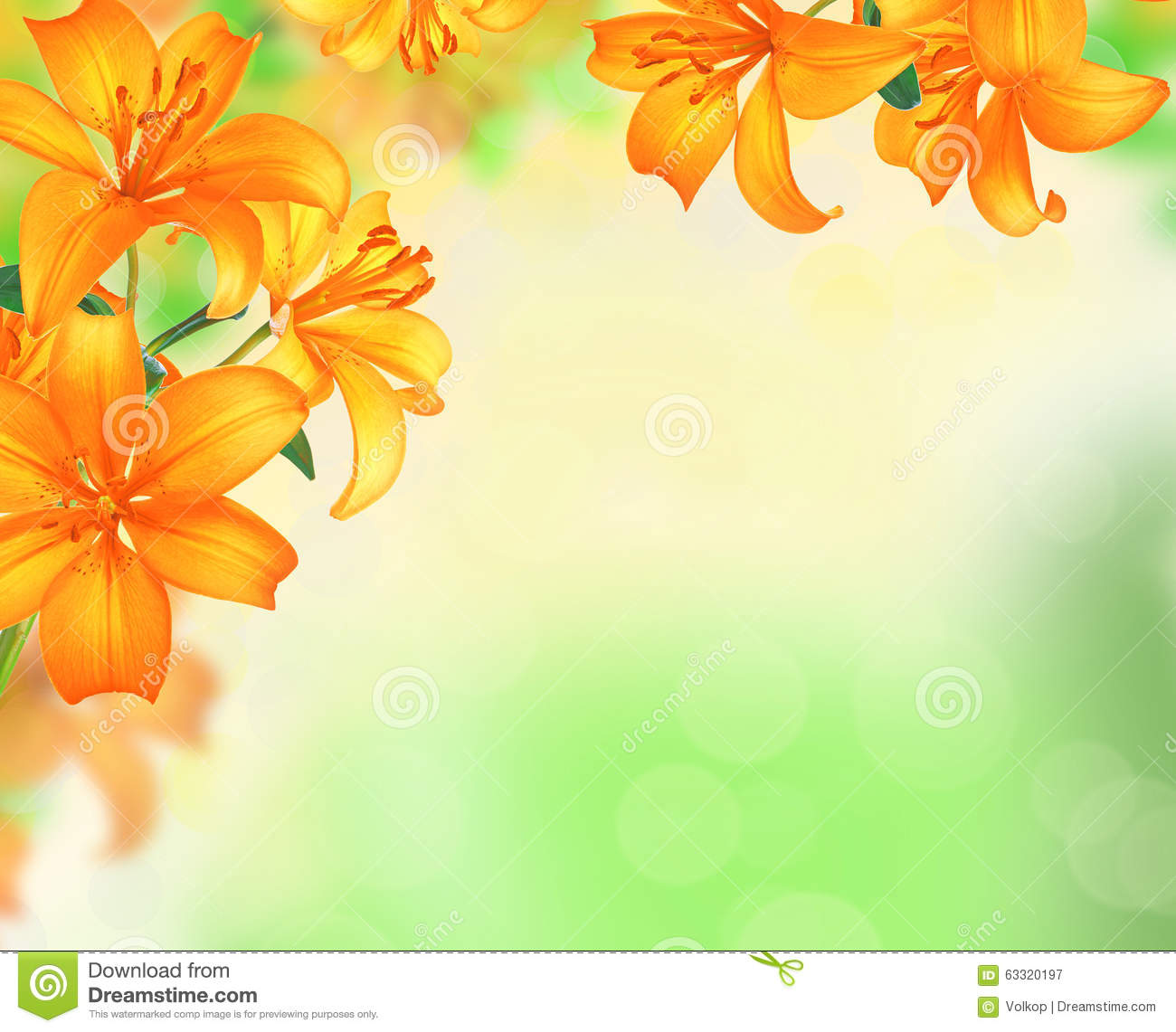Lily Flowers Border Design Over Blurred Nature Background Stock.