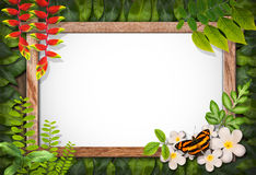 Nature Border With Flower And Green Leaf Stock Photo.