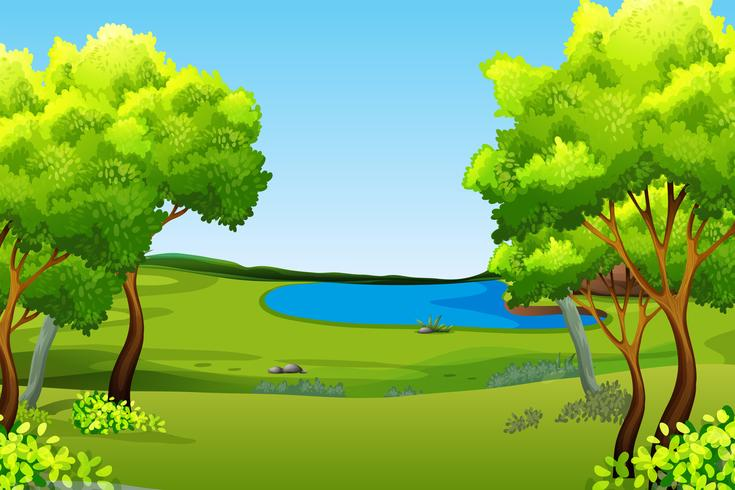 A green nature background.
